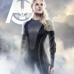 Catching Fire Cashmere Poster