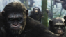 DAWN OF THE PLANET OF THE APES Is Just Another Unwieldy Blockbuster